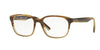 Ray-Ban Optical RX5340 Square Eyeglasses  5542-BROWN HORN GRAD TRASP BEIGE 51-18-140 - Color Map brown