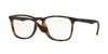 Ray-Ban Optical RX7074F Square Eyeglasses  5365-RUBBER HAVANA 52-18-145 - Color Map havana