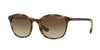 Vogue VO5051SF Square Sunglasses  W65613-DARK HAVANA 52-18-140 - Color Map havana