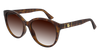 GUCCI GG0631S CAT EYE Sunglasses For Women  GG0631S-002 HAVANA HAVANA / BROWN SHINY 56-18-145