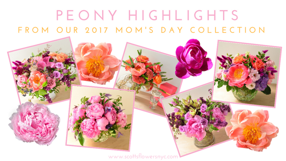 ScottsFlowersNYC2017MothersDayCollection