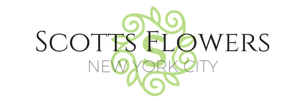 2016 Holiday Gifts at Scotts Flowers NYC scotts-flowers