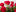 1 Dozen Long-Stemmed Roses in Vase -tile