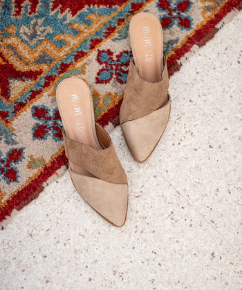Two-Toned Pointed Mule