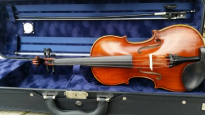 Eastman Acoustic Electric Violin - VL305ST EAV