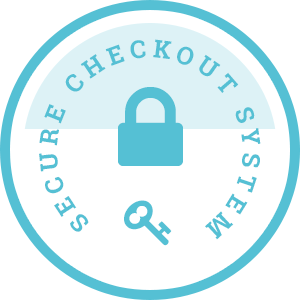 Secure Checkout System