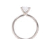 Sasha Primak Classic Rounded 4 Prong Solitaire