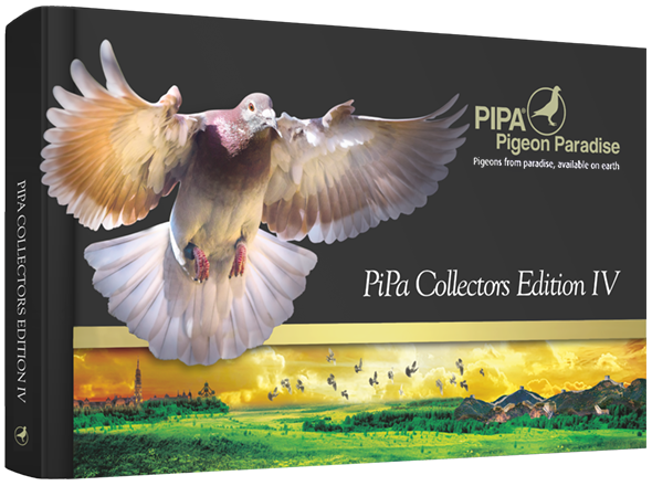 We landed the cover (again!) of Pipa Collector's Edition 4