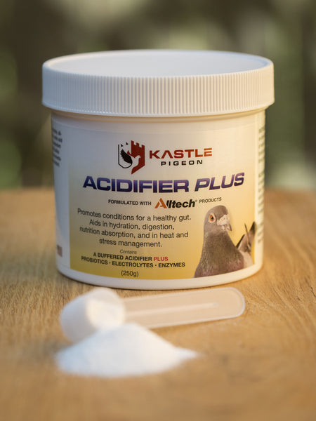 Acidifier Plus Kastle Pigeon Supplement, an alternative to apple cider vinegar