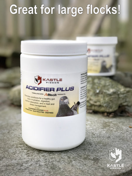Racing and show Pigeon probiotic acidifier electrolyte