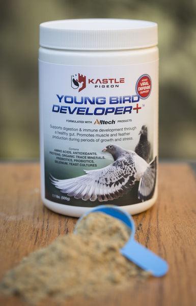 virus support health supplement probiotics for young pigeons