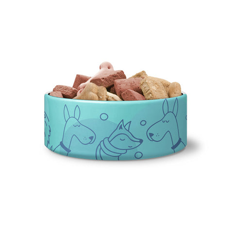 "Dog Bowl - ""Hipster Dogs"""