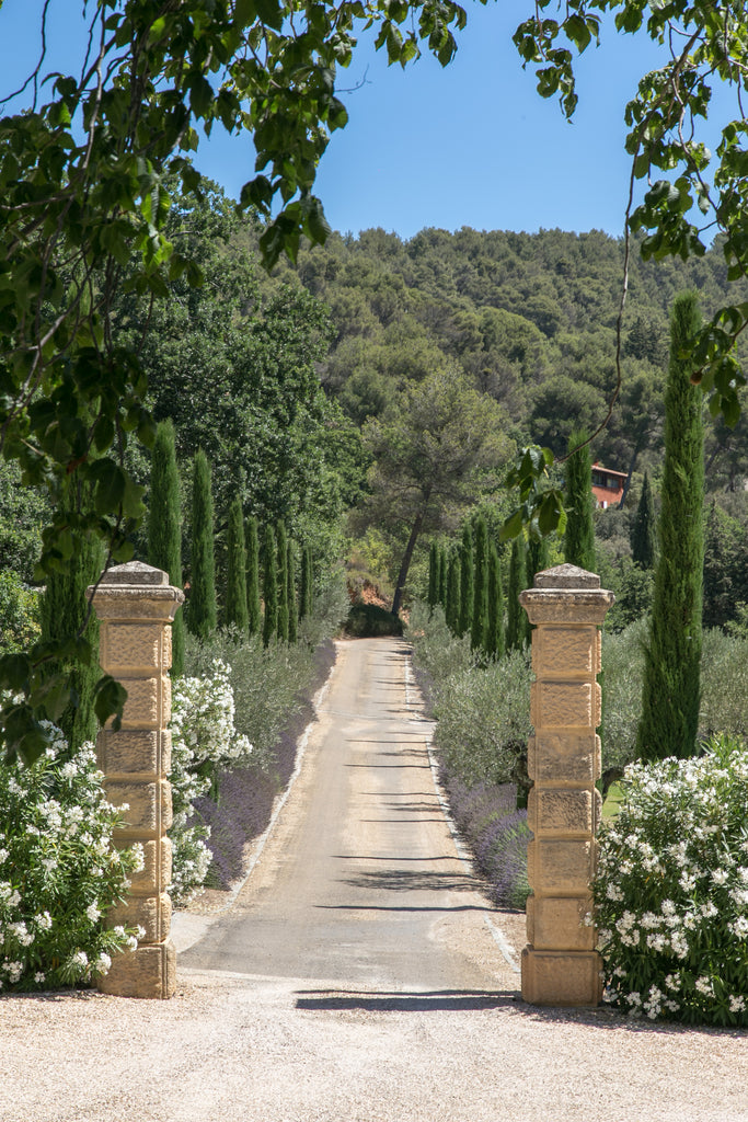Arriving at Domaine Chantecler, the bastide of Frederic Fekkai and Shirin von Wulffen in Aix-en-Provence