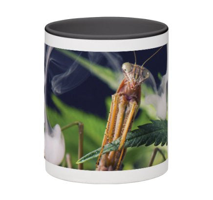Mantis Clouds Mug