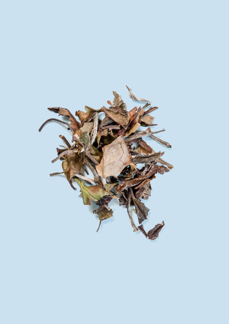 photo of Organic White Peony loose tea