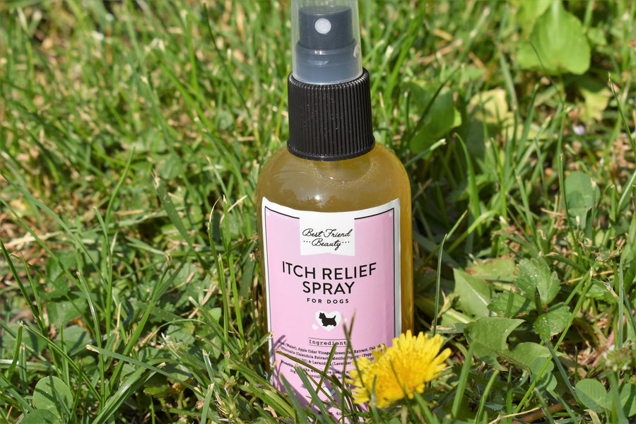 Dog Itch Relief Spray