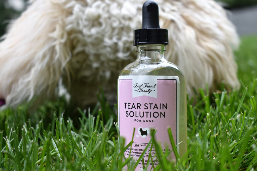 Dog Tear Stain Solution