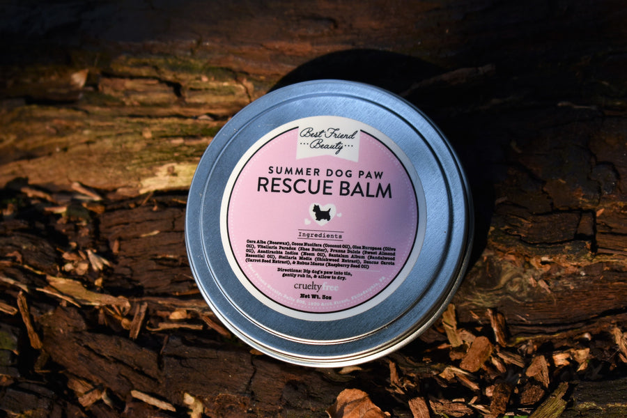 Summer Dog Paw Rescue Balm