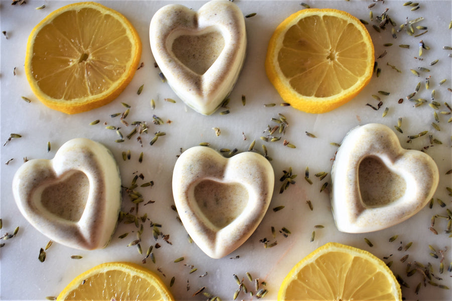 Valentine's Day Lavender Lemon Solid Dog Shampoo