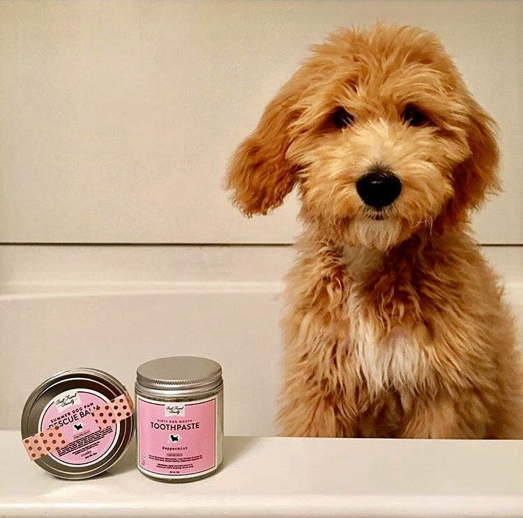 Dirty Mouth Dog Toothpaste - Luxury Organic All-Natural