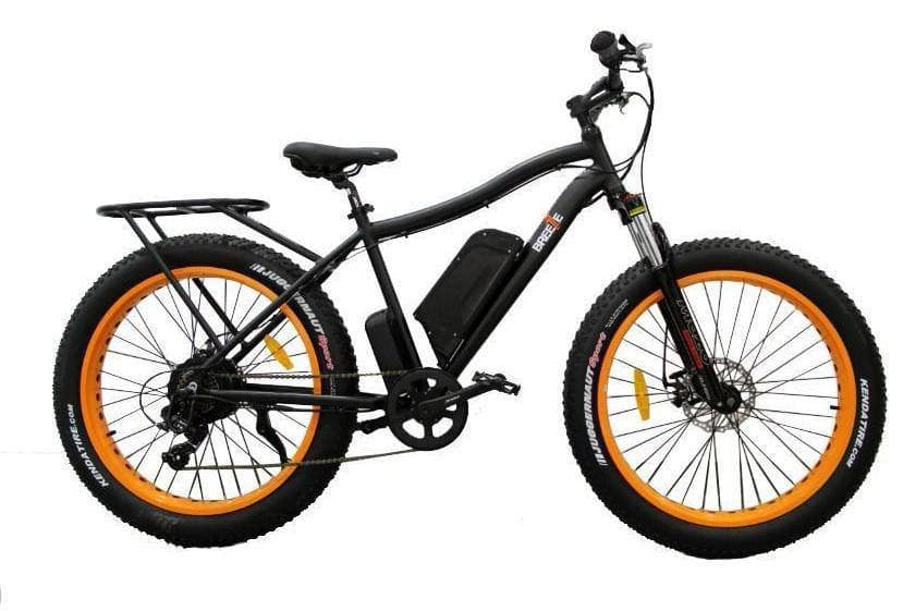 All about Safecastle Breeze Electric Bike 500W 48V