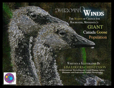 New Book and Exhibit by Lisa Loucks-Christenson, OPPOSING WINDS: The Season of Change for Rochester, Minnesota's Giant Canada Goose Population