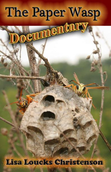 The Paper Wasp Documentary