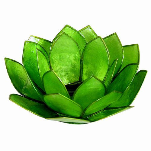"Lotus Design Capiz Tea Light Holder 5""W (Green)"