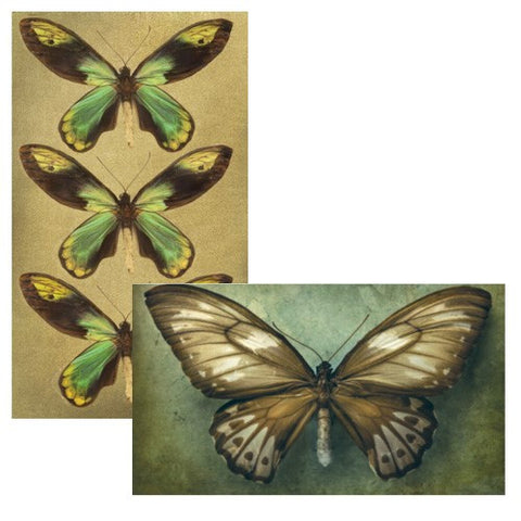 Decorative Matches, Butterflies, Set of 2 Matchboxes