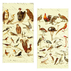 Decorative Matchboxes:Set of 2 Match Boxes, Vintage Birds