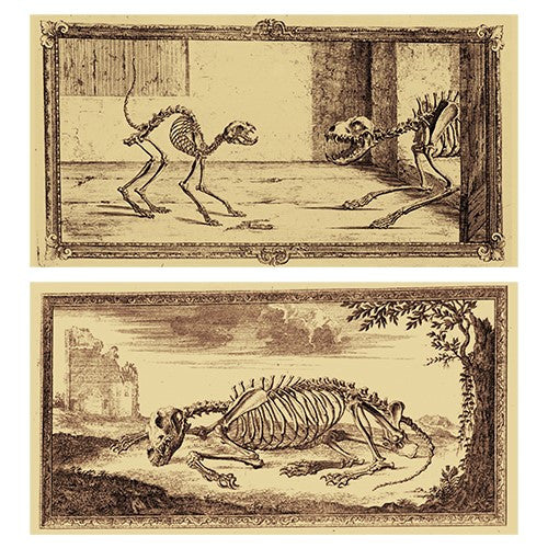 Decorative Matchboxes:Set of 2 Match Boxes, Skeleton Pets