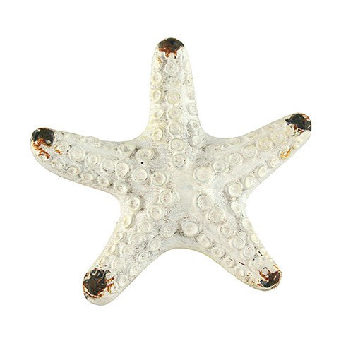 "STARFISH KNOB ANTIQUE WHITE 2.125D x 1"" + Screw"