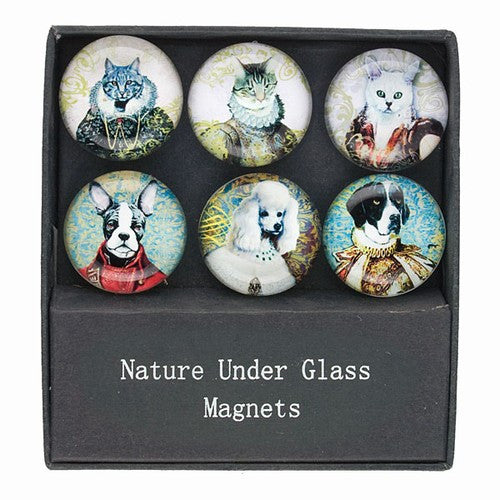 "DOG AND CAT GLASS MAGNETS GIFT SET 1.375""Dia"