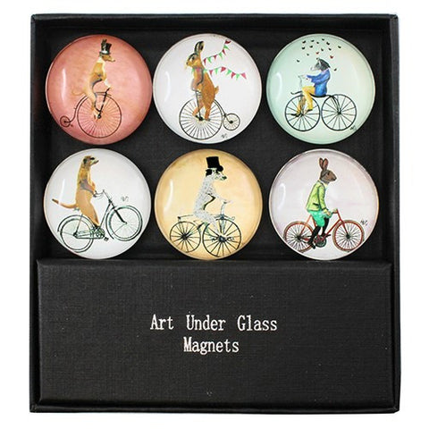 "CYCLING ANIMAL MAGNET 6PC/SET 1.375""Dia"