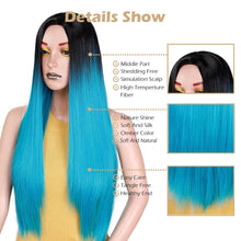 Load image into Gallery viewer, Costume & Party Wig - Straight Ombre 24 Inch Heat Resistant Cosplay Wig
