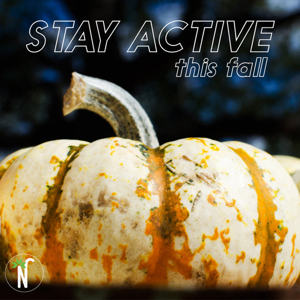 5 Fun Ways to Stay Active this Fall