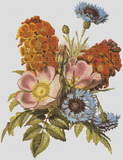 Blue Bottle, Dog Rose, And Garden Wall Flower - Pattern and Print
