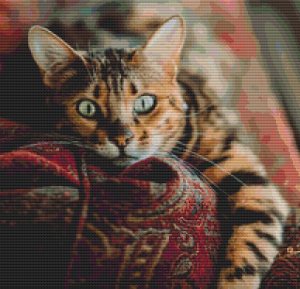 Cat on a Sofa - Pattern and Print