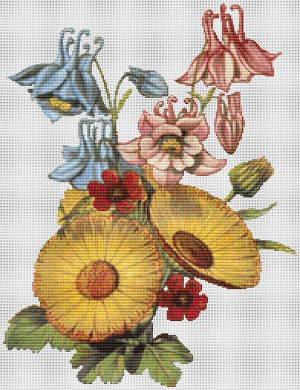 Columbine, Marigold, and Pheasant's Eye - Pattern and Print