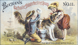 Buchan's Carbolic Disinfecting Soap Trading Card - Pattern and Print