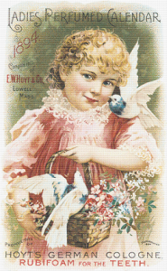 E. W. Hoyt and Co. Trading Card - Pattern and Print
