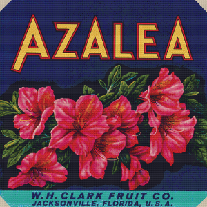 W. H. Clark Fruit Co. Label