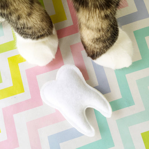 Catnip Tooth Cat Toy