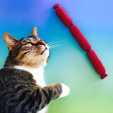 Catnip Sausage Rope Cat Toy