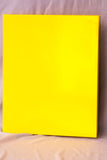 Double Pocket Folder Paper Laminated Neon