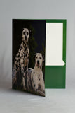 Double Pocket Folder Paper Laminated Dogs And Cats