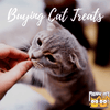A Guide to Buying Treats for Cats
