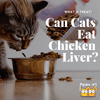Can Cats Eat Chicken Liver?