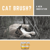 The Best Cat Brush Yet?: Take a Look!