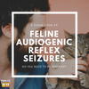 A Quick Look at the Feline Audiogenic Reflex Seizures: Do You Need to Be Worried?
